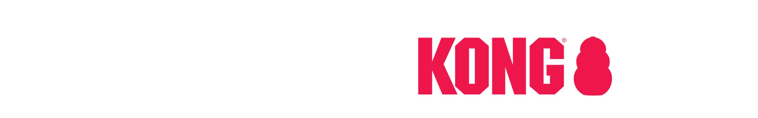Bannière Kong