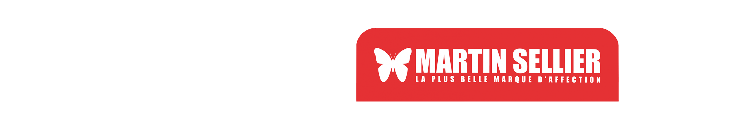 Bannière Martin Sellier