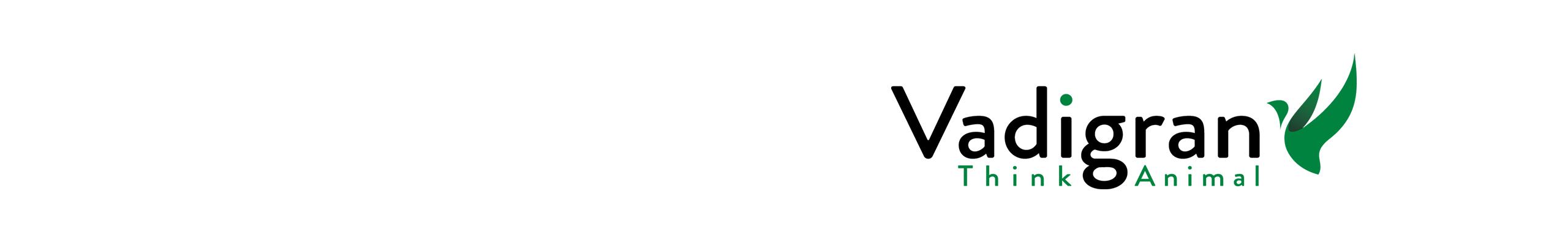 Bannière Vadigran