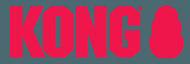 Kong-besancon