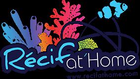 www.recifathome.com